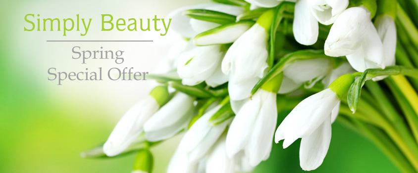 spring-offer