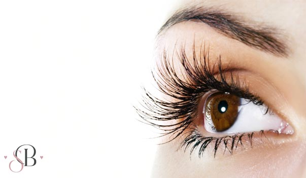 Eye Lash and Brow Treatments York